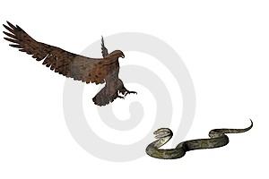eagle snake 2